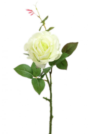 Beautiful Single Champagne Cream Ivory Rose Stem Artificial Flower
