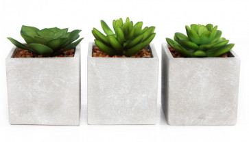Artificial Fake Succulent Cactus Plant With Faux Cement Planter Pot