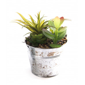 Artificial Faux Succulent Plant With Metal Tin Planter Pot ~ Design Varies - One Supplied