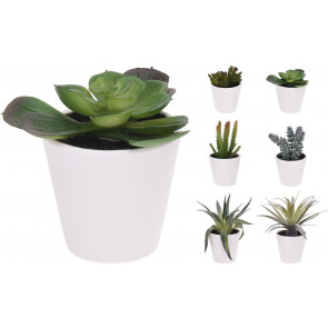 Artificial Fake Succulent Plant With Decorative Pot ~ Design Varies, One Supplied