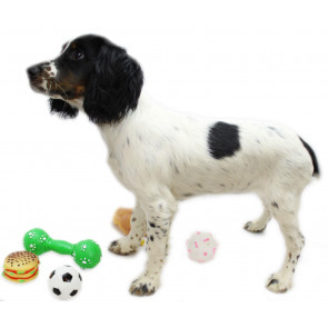 Pack Of 3 Squeaky Squeezy Dog Chew Pet Toys ~ Designs Vary