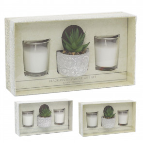 Aromatherapy Gift Set Scented Candles And Faux Succulent Plant | Fragrance Tealight Candles With Planter | Candle Gift Box - One Supplied