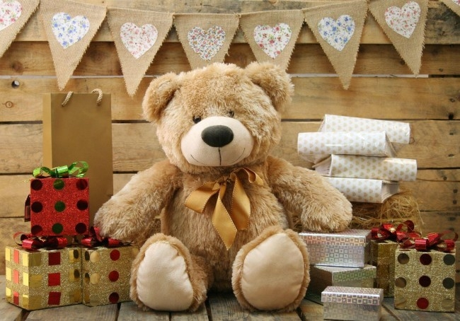 55cm Cookie Teddy Bear